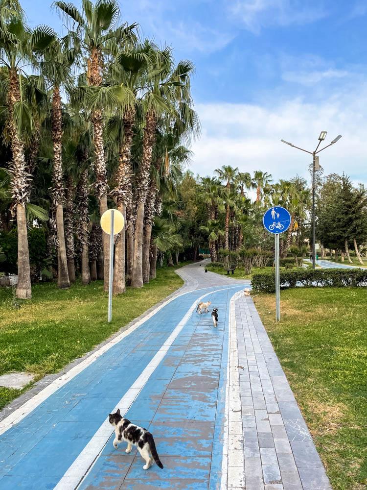 Bike path in Ataturk Kultur park